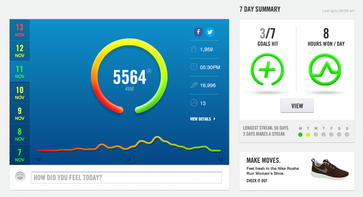 Day summary on the Nike Fuelband web app