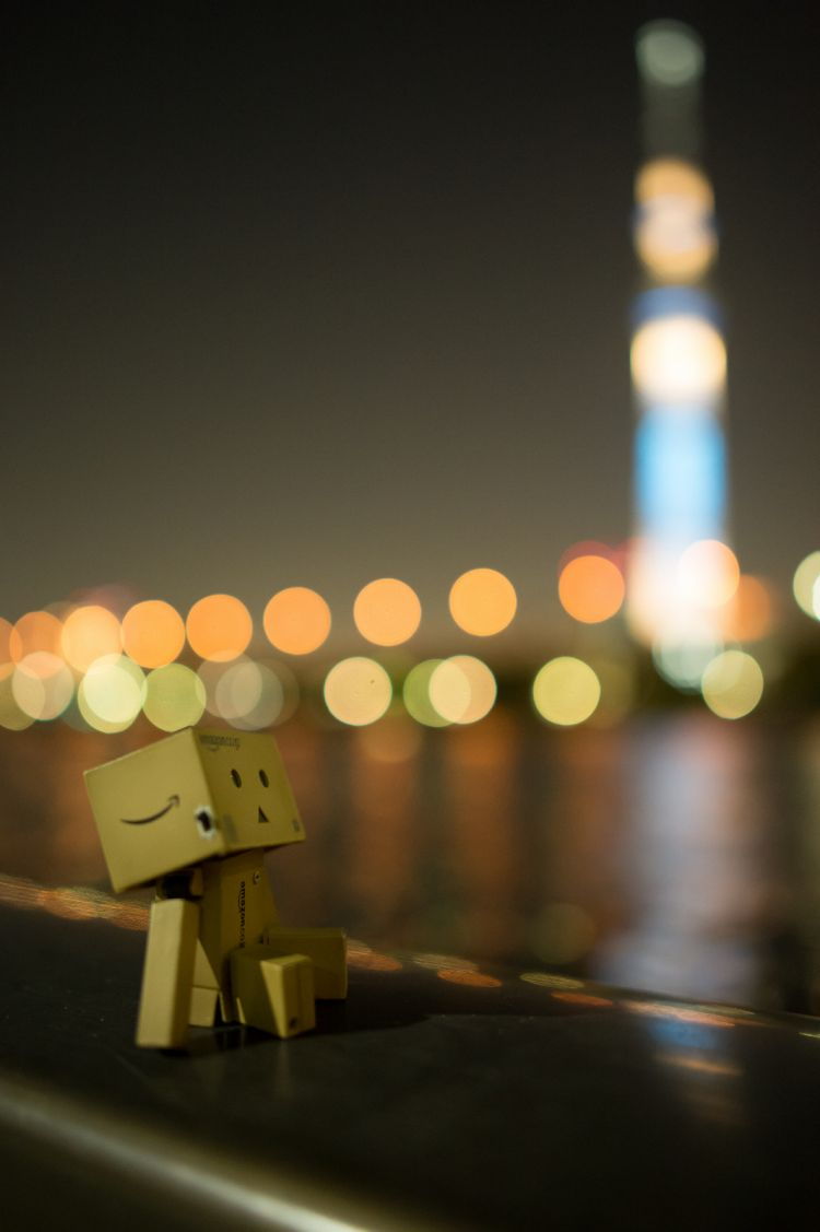Danbo enjoy viewing Tokyo Sky Tree