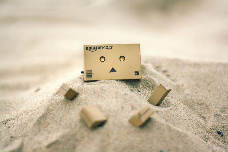 danbo buried in sand