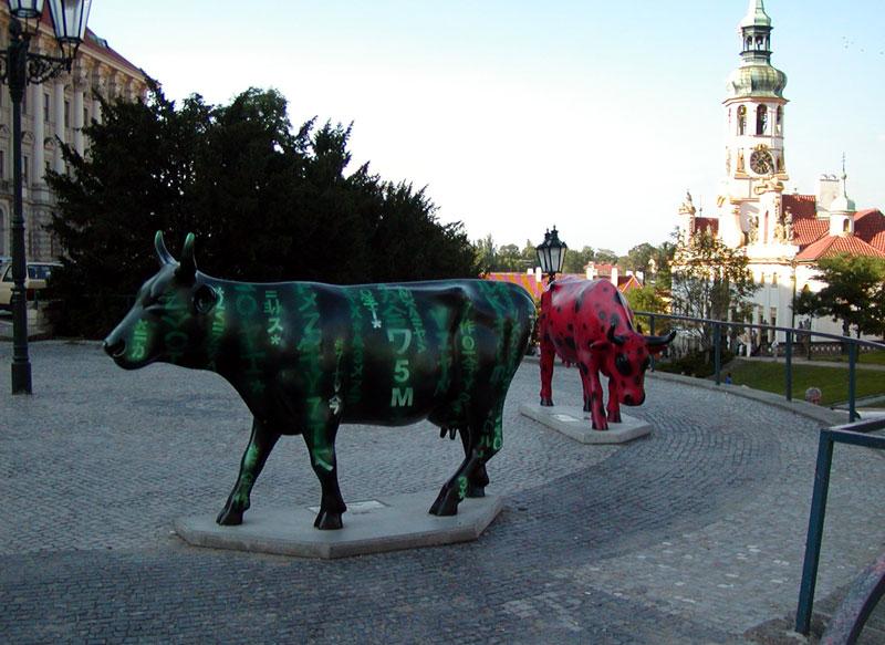 Matrix-cow
