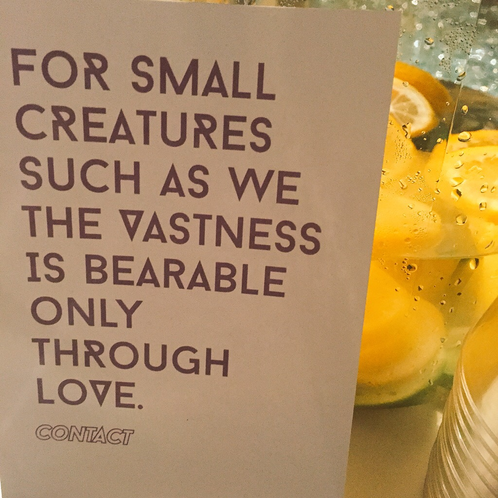 for small creatures such as we the vastness is bearable only through love